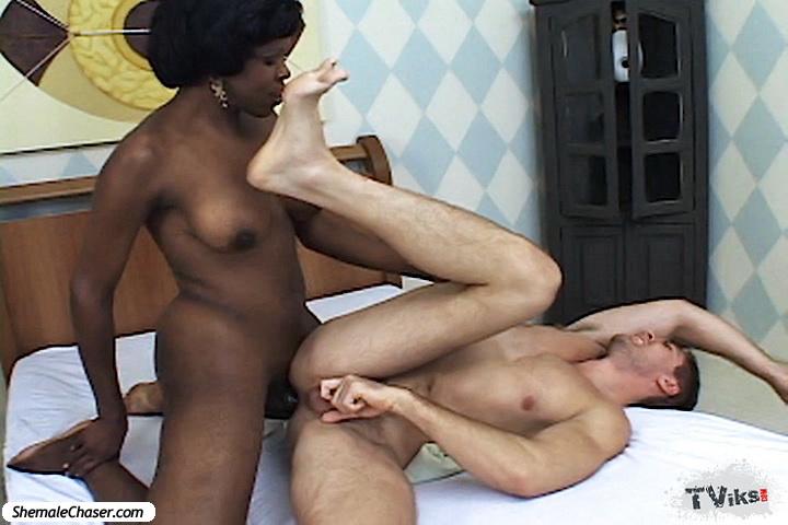 Негритянки гермофродитки порно
